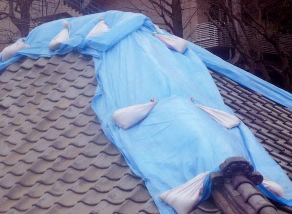 震災後@ブルシート.jpg