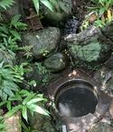 忠綱寺の井戸